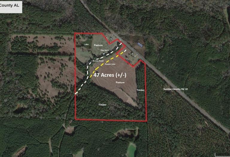 47 Acres (+/-) Kintebish Community/Sumter County Road #10 Sumter County Alabama