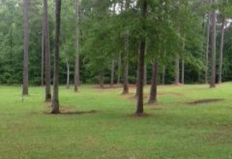 "Lake Lavada ""HOME LOTS"" Butler, Alabama 36904"