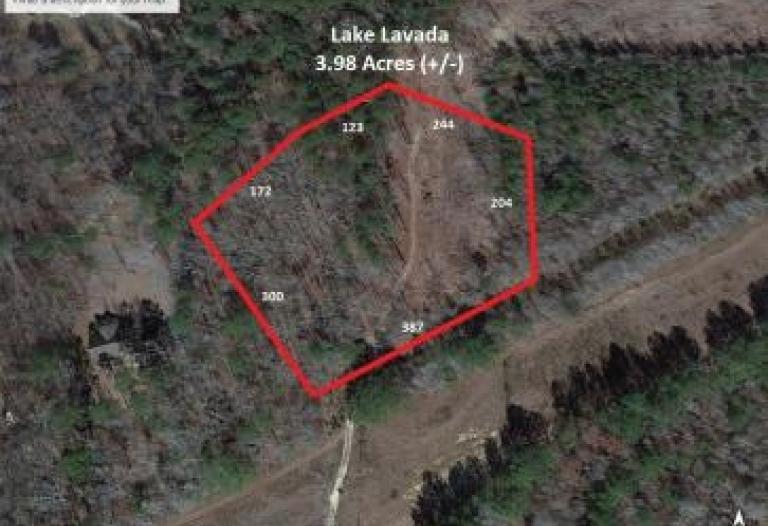 3.98 (+/-) acres Lake Lavada Subdivision Butler, Alabama 36904